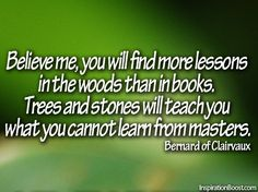 Believe me, you will find more lessons in the woods than in books. Trees and stones will teach you what you cannot learn from masters. - Bernard of Clairvaux -