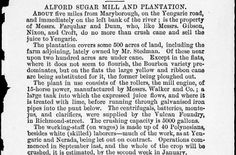 Alford Sugar Mill and Plantation, Yengarie Road. 1875