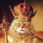 #idaSMA #idaCattelan #PeterPan #Gugghenheim #MaurizioCattelan #idaKant #wanna #Shoop #Guggenheim #Idamariapan #idaBond #Desire #idaByrne #Pocorobba #HoVistoUnRe #adela #rdj #Nugget #idaJoker #idaJack #jackpot #idaFreud #Freud #Karma #RobertDowneyJr #Cat #idaEinstein #Einstein #idaJung #CGJung #Personality #Disorder #DDT #idaInTrauma #idaCrowley #MCU #idampan #DylanImp #idaClash #idaHemingway #idaCohen #TheFuture #BobDylan #Lola #MaryCBeal #indioPerez #PerezPaz #idaSMA #idaZERO #idaZiggy