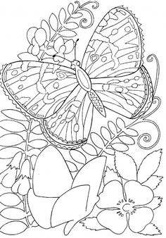 Hard butterflies Coloring Pages for Adults to print | Butterfly Among Flowers Coloring Page coloring page | Super Coloring