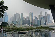 [Singapur mit Kindern] Unsere Tipps: von Übernachtung über Essen bis Sightseeing - Planet Hibbel Marina Bay Sands, Das Hotel, Dom, New York Skyline, Children, Travel, Interactive Display, Walking Paths, Light Installation
