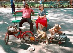 """In August the NY Parks Department hired eight temporarily unemployed Times photographers to document the parks system, """"warts and all"""""""