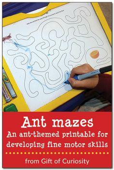 Ant mazes - an ant-themed printable for developing fine motor skills #ants #handsonlearning || Gift of Curiosity
