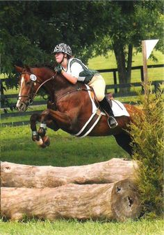 """On High Heels, AKA """"Tango,"""" owned by Megan Stout! Tango is a Trakehner mare that competed up to Prelim level in eventing."""