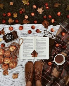 Picnic in autumn - Herbst / Autum / Fall - holidays Autumn Cozy, Fall Winter, Autumn Feeling, Winter Snow, Winter Christmas, Fall Inspiration, Fashion Inspiration, Book And Coffee, Coffee Cozy
