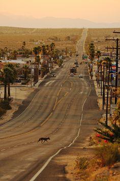 Twentynine Palms in San Bernardino County, California, United States