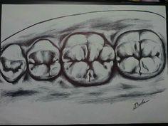 Dudu may refer to: Dental Life, Dental Art, Dental Teeth, Teeth Drawing, Dental Anatomy, Molar Tooth, Dental Technician, Dental Design, Dental Assistant