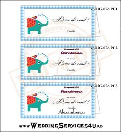 Place Card – Plic de Bani, Meniu, Nr. Masa   Model IG076 - cu Elefantel si Pasarica