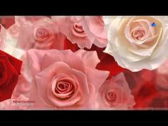 ▶ ♡ And I Love You So - RICHARD CLAYDERMAN - YouTube