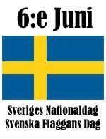 The of June is Sweden's National Day and everyone who has a flagpole in their garden hoists their flag! This day was made a national holiday a few years ago. Sweden Cities, Great Northern Railroad, Welcome To Sweden, Sweden Flag, Swedish Traditions, About Sweden, Swedish Girls, Sweden Travel, Scandinavian Countries