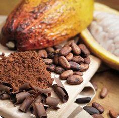 A Cocoa Collage