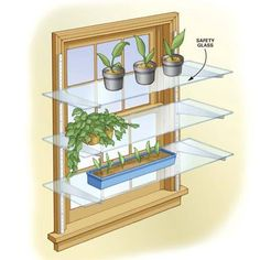 DIY Tip of the Day: Glass Shelves for Plants. Create your own mini greenhouse.Screw everyday shelf tracks to each side of a window, insert brackets and then add safety-glass shelving to hold your plants. Confirm with the glass dealer that the glass you buy is strong enough to span the brackets and support plants.