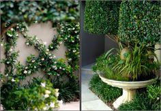 Courtyard garden landscaping idea....simplistic yet beautiful