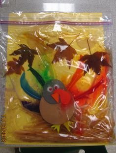 Turkey Sensory bag - used hair gel, straw, leaves & a foam & feather turkey