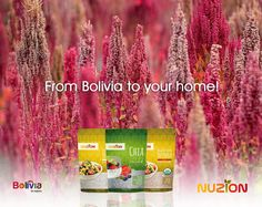 Our Chia and Quinoa Seeds come directly from Bolivia, and they are completely natural and organic. Enjoy these healthy delights!  #lunch #dinner #nuzion #cleaneating #quinoa #chia #chiaseeds #organic #healthyfood #detox #vegan #fiber #nongmo #nutrition #glutenfree #healthy #lifestyle #lunchtime #protein #fit #saludable #food #salad #diet #fitness #yummy #Instafood #cooking