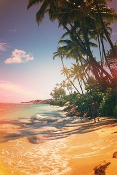 Kahala Beach, Hawaii