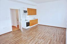 Pronájem bytu Brno-střed (Štýřice), nezařízené 1+kk Renneská třída, blízko centra v klidném prostředí.