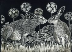 Lièvres Starstruck Fine Art Print d