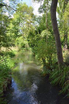 La maison de Monet (les jardins) Photo Stéphane Morin