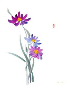 water color blue aster flower