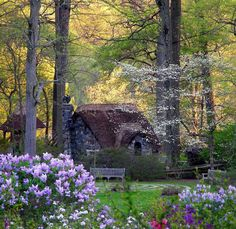 Beautiful little cottage in the woods….. I want to live there…..