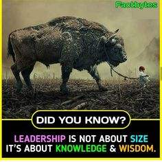 A fool thinks himself to be wise but a wise man knows Himself to be a fool. General Knowledge Facts, Knowledge Quotes, Knowledge And Wisdom, Wow Facts, Real Facts, Weird Facts, Funny Science Jokes, Science Facts, Unbelievable Facts