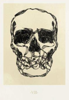 Illustrations by Ross Mcewan