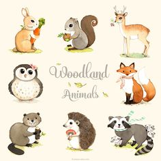Woodland animals print set woodland forest animals by joojoo, $48.00