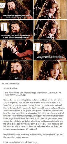 Hagrid is amazing Theme Harry Potter, Harry Potter Jokes, Harry Potter Fandom, Harry Potter World, Hogwarts, Slytherin, Movies Quotes, Book Quotes, Funny Quotes