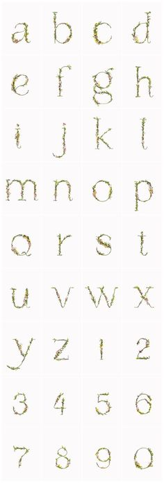 How cool is this typography by Zero and Alice Mourou?! This alphabet is constructed all by hand using natural flowers and blossoms. Take a look, it's pretty amazing!         All images by Zero and Alice Mourou