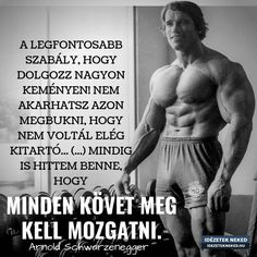 Study Motivation Quotes, Work Quotes, Gentleman Rules, Gym Quote, Sport Icon, Arnold Schwarzenegger, Proud Of You, Budapest, Quotations