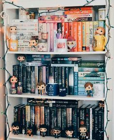 dream pop I literally want all these pops I Love Books, Books To Read, My Books, Funko Pop Display, Deco Harry Potter, Bookshelf Inspiration, Dream Library, Book Aesthetic, Shelfie
