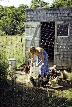We have to kind of fence off our wee hens as they love to scratch & peck in the kitchen garden. Country Farm, Country Life, Country Girls, Country Living, Keeping Chickens, Raising Chickens, Future Farms, Down On The Farm, Farms Living