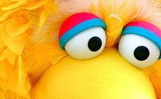 Big Bird's Eyes for headpiece Golf Pga, Big Bird, Headpiece, Halloween Costumes, Eyes, Street, Fall, Happy, Autumn