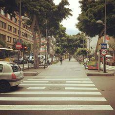 Avenida Mesa y López (Las Palmas de Gran Canaria)