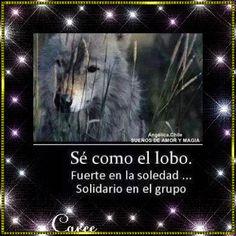 SUEÑOS DE AMOR Y MAGIA: Sé como el lobo