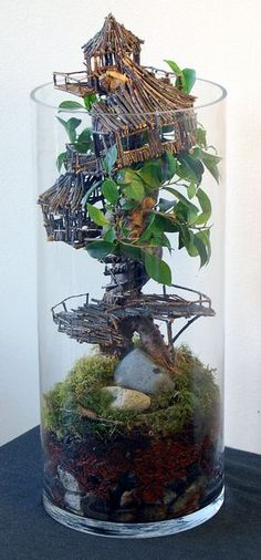Bonsai Terrarium For Landscaping Miniature Inside The Jars 69 - DecOMG Air Plants, Indoor Plants, Indoor Garden, Garden Art, Garden Design, Deco Floral, Fairy Houses, Tree Houses, Container Gardening