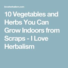 10 Vegetables and Herbs You Can Grow Indoors from Scraps - I Love Herbalism