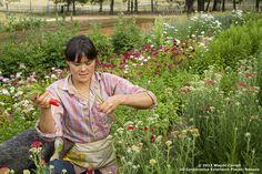 More harvesting.  Spring perennials at #DBF.  #farmerflorist