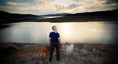 120 Best Tips For Dog Lovers Images On Pinterest Dog