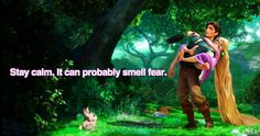 """""""Stay calm. It can probably smell fear."""""""