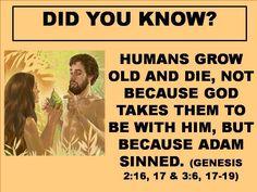 More information JW.org