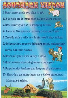Southern Wisdom Humor - FOR TRADE