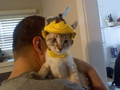 Baby Loki dressed as a bee for halloween. Can't believe how little he used to be!