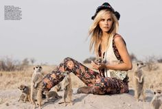 Isabel Lucas by Max Doyle for Vogue meerkats!