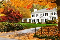 Are you a homeowner who's thinking about selling, yet you may feel you missed the prime selling season and may have to put off listing your home until the Spring?  Don't despair, there are many good reasons to go ahead and list your property now, you just need to have a strategic plan, so it doesn't sit on the market all Winter. According to the National Association of Realtors, Existing home sales have increased from November to December an average of 4.5% in the past three winters.