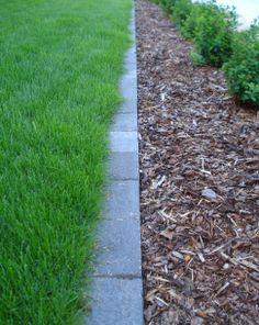 Betonikivi nurmikon ja istutusalueen välissä. - Concrete pavers between the grass and planting area.