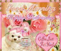 Good Morning Images with Wednesday 2 Good Morning Happy, Good Morning Picture, Good Morning Friends, Morning Pictures, Happy Birthday Pictures, Very Happy Birthday, Rose Pictures, Friend Pictures, Good Morning Images Download