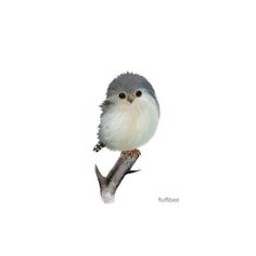 Items similar to Bird painting bird prints nursery decor baby pygmy falcon wall art print home decoration on Etsy Watercolor Bird, Watercolor Animals, Watercolor Paintings, Watercolors, Bird Drawings, Cute Drawings, Bird Prints, Wall Art Prints, Painting Prints