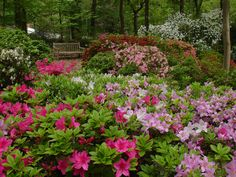 Perkins Garden
